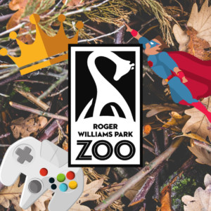 Family Fun Nights at Roger Williams Park Zoo @ Roger Williams Park Zoo | Providence | Rhode Island | United States