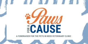 Paws For A Cause @ Linden Place | Bristol | Rhode Island | United States