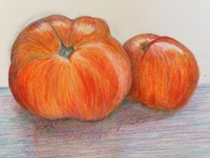Beginner Botanical Drawing Series: Autumn @ Blithewold Mansion, Gardens, and Arboretum   Bristol   Rhode Island   United States