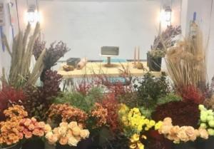 Autumnal Arrangements @ Blithewold Mansion, Gardens, and Arboretum | Bristol | Rhode Island | United States