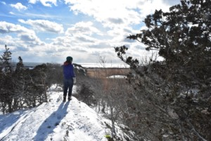 Winter Woodland Hike @ Norman Bird Sanctuary | Middletown | Rhode Island | United States