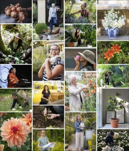 Women in Horticulture Symposium at Blithewold @ Blithewold Mansion, Gardens, and Arboretum | Bristol | Rhode Island | United States