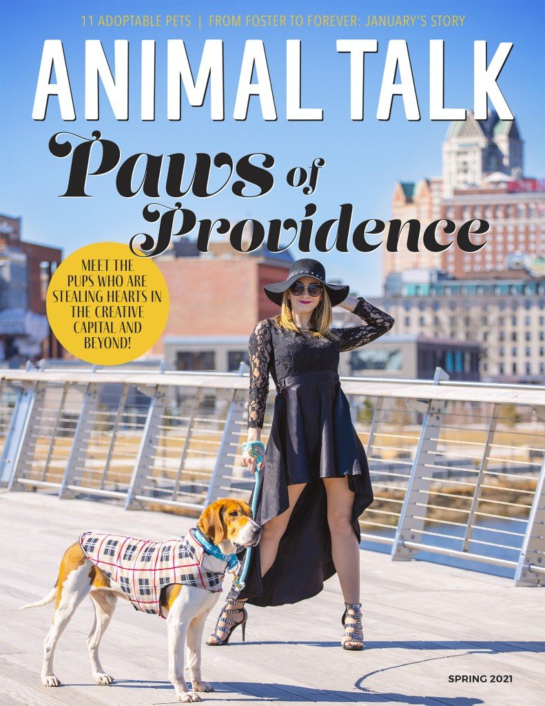 Animal Talk Cover Spring 2021