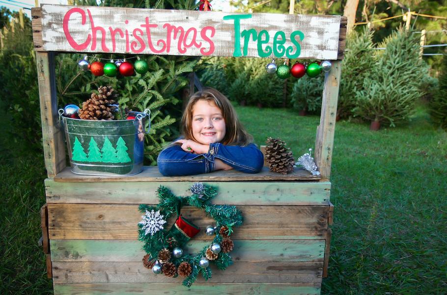 Christmastreefarmstock2