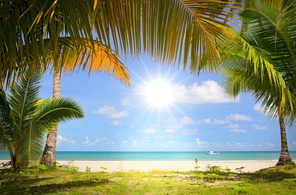 Bigstock Sun In Blue Sky And Palm Trees 26620511