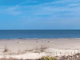 Beachthumb