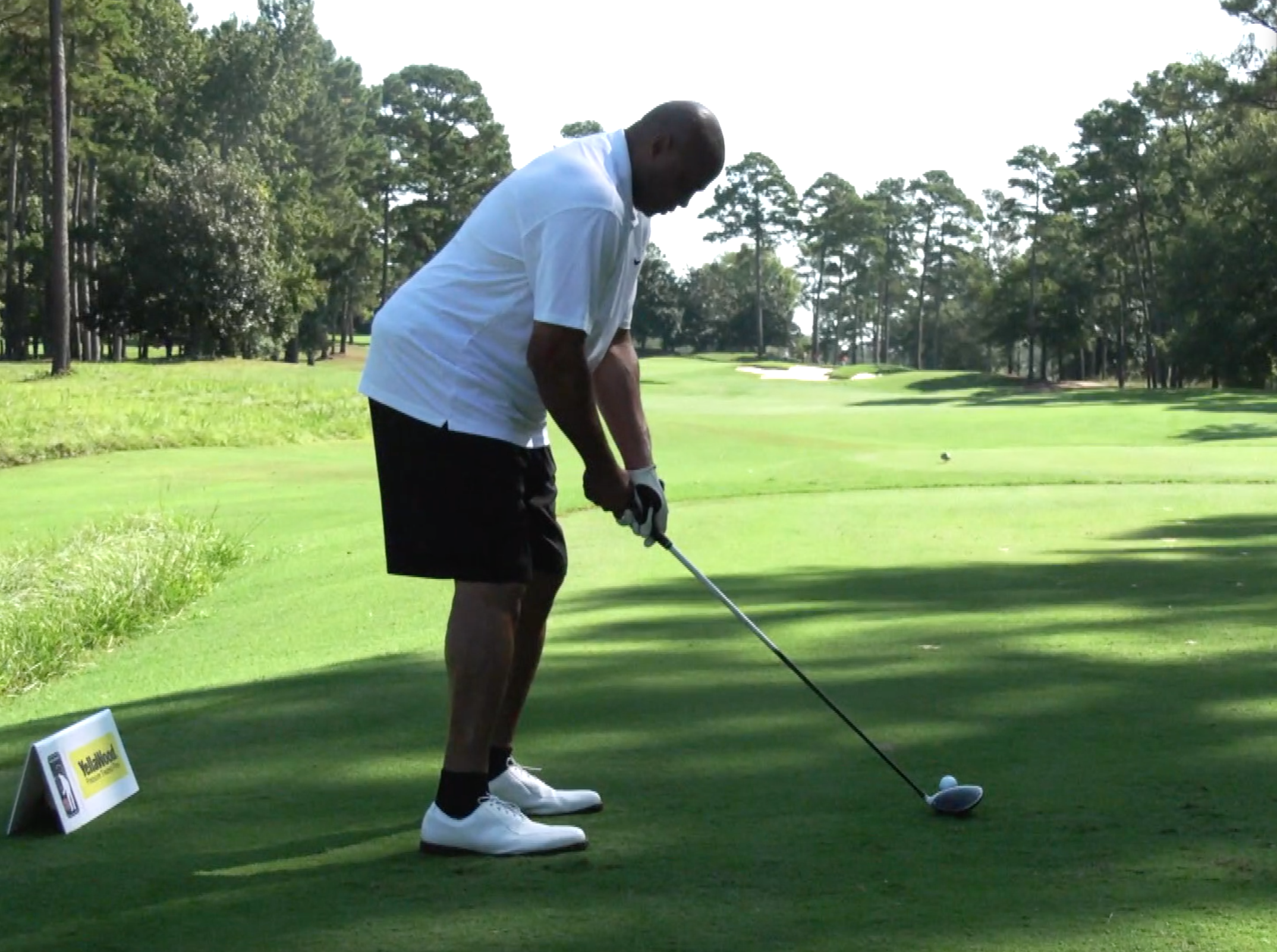 Charles Barkley Golf Swing Images | Decoration Cloth