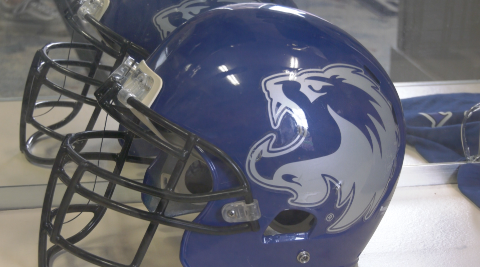 Columbus Lions Season Postponed